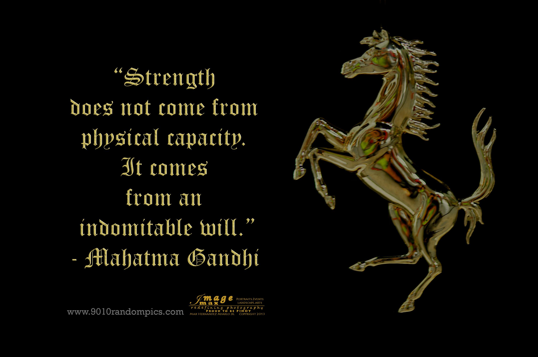 Inner Strength   9010randompics.com